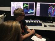 Laboratório do BioISI/Ciências ULisboa