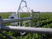 O SMART FARM CoLAB ficará localizado nas antigas instalações do Instituto da Vinha e do Vinho, em Torres Vedras