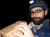 Flávio Gomes Oliveira a verificar se as armadilhas capturaram algum musaranho