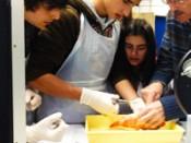 Ciências em Movimento - Laboratório Biologia Animal
