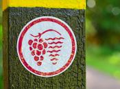 Fotografia de placa de identificação de zona de plantação de vinha