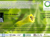 "Seminário ""ECONICS, solutions inspired by ecological systems"""