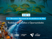 1.º Encontro Nacional de Incubadoras do Mar