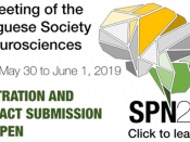 SPN2019 - VI Meeting of the Portuguese Society for Neuroscience