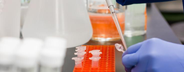 Ciências ULisboa vai criar um Centro de Testes à COVID-19
