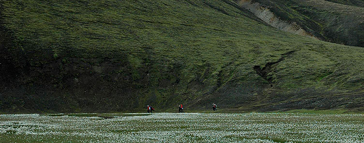 Fotografia de caminhantes numa montanha
