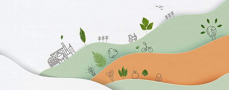 Desenho de campo e atividades agrícolas