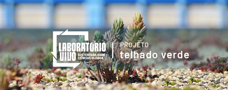 Logótipo do projeto Telhado verde e respetiva fotografia