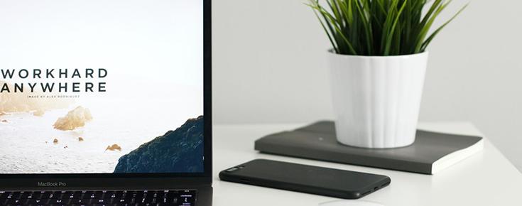 Fotografia de um computador portátil e de um vaso com plantas